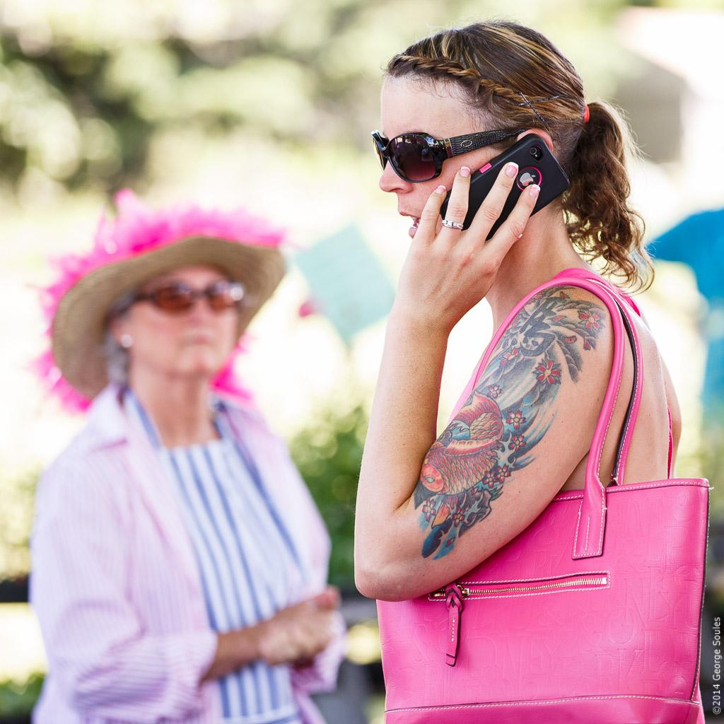 Flamingo Festival